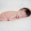 Lyla Newborn Portraits : 